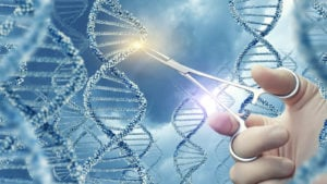 BNGO stock: a stylized image of a Doctor touching a medical clamp a DNA molecule